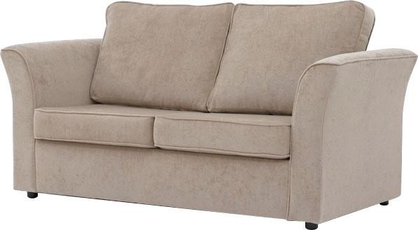 Carlson 2 Seater Sofa bed
